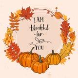 秋天五颜六色的设计叶子花圈 库存照片
