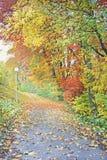秋天五颜六色的路径 免版税库存图片