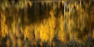 秋天亚斯本反射在寂静的水中 免版税库存图片