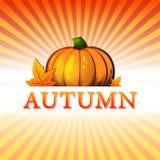 秋天例证用南瓜和秋天叶子和光芒 免版税库存照片