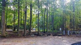 秋天供徒步旅行的小道 库存图片