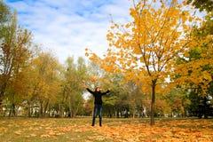 秋天俏丽的妇女年轻人 免版税库存图片