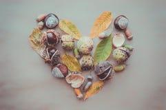 秋天假日感恩贺卡的平的位置构成 橡子,叶子,以心脏的形式栗子在kra 免版税库存图片