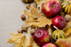 秋天假日感恩 静物画用南瓜和苹果, 免版税库存照片