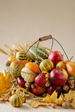 秋天假日感恩 静物画用南瓜和苹果, 免版税图库摄影
