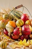 秋天假日感恩 静物画用南瓜和苹果, 库存照片