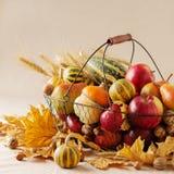 秋天假日感恩 静物画用南瓜和苹果, 免版税库存图片