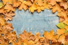 秋天做的框架叶子 图库摄影