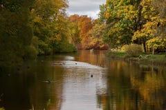 秋天公园和池塘在一个晴天 免版税库存照片