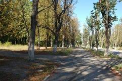 秋天公园哈尔科夫 库存图片