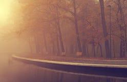 秋天公园在一有雾的天 图库摄影