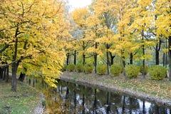 秋天公园在圣彼德堡,俄罗斯 库存照片