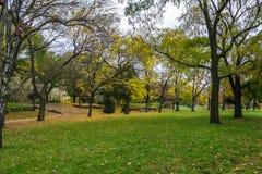 秋天公园在市罗兹,波兰 库存照片