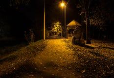 秋天公园在晚上 发光的光 有秋叶的路 库存图片