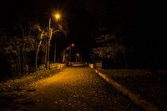 秋天公园在晚上 发光的光 有秋叶的路 免版税库存图片