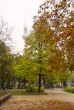 秋天公园在柏林 库存照片