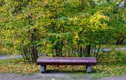 秋天公园在维堡,俄罗斯 库存照片