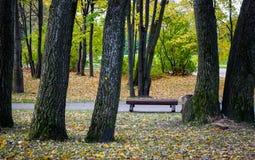 秋天公园在维堡,俄罗斯 库存图片