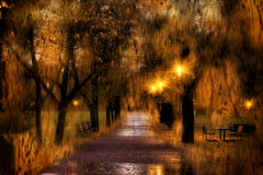 秋天公园在雨中通过湿窗口,布拉格,捷克 库存图片