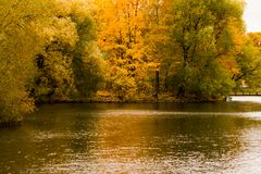 秋天公园池塘树 免版税库存照片