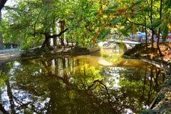 秋天公园池塘 免版税库存图片