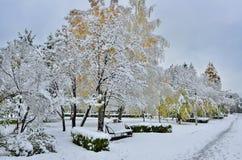 秋天公园的明亮的颜色包括第一雪 库存照片