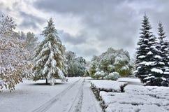秋天公园的明亮的颜色包括第一雪 库存图片