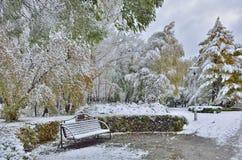 秋天公园的明亮的颜色包括第一雪 图库摄影
