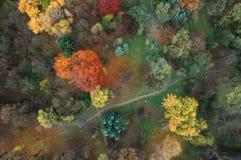 秋天公园空中照片  免版税图库摄影