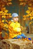 秋天公园背景的小男孩  有枫叶的孩子 免版税库存图片