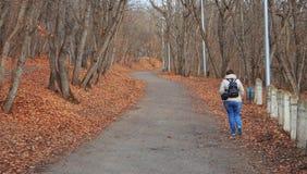 秋天公园走的妇女年轻人 免版税库存图片
