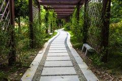 秋天公园路黄色 图库摄影