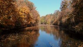 秋天公园鸟瞰图有湖的 影视素材