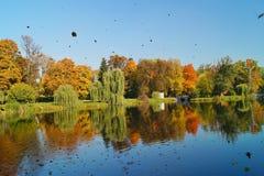 秋天公园,池塘-美好的秋天风景 免版税库存照片