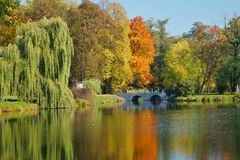 秋天公园,池塘-美好的秋天风景 库存照片