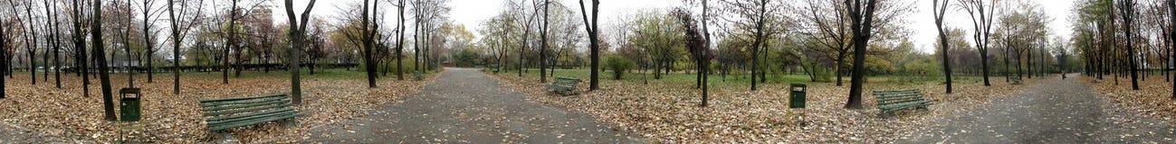 秋天公园360度全景 免版税库存照片
