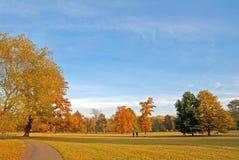 秋天公园parkland结构树 图库摄影
