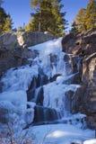 秋天冻结的冰冷的水 库存照片