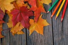 秋天创造性的艺术概念,槭树在桌离开 免版税图库摄影