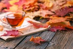 秋天创造性的艺术概念,槭树在桌离开 免版税库存图片