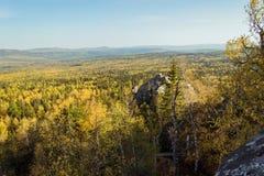秋天初期在从mo的高度的森林里 免版税图库摄影