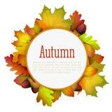 秋天包含文件框架叶子路径 免版税库存照片