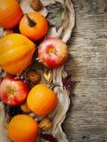 秋天南瓜和苹果与秋天在木背景离开 免版税库存照片
