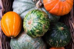 秋天南瓜感恩背景-在木桌的橙色南瓜 免版税库存图片