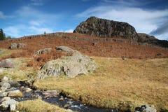 秋天及早做山山照片极性流 库存图片