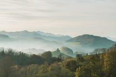 秋天反对天空的森林风景 免版税库存照片