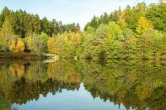 秋天反射在从树的水中在教务长森林里在英国乡下 免版税库存照片