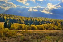 秋天口音在一个晴天的 免版税库存照片