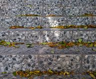 秋天台阶 免版税图库摄影