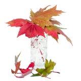 秋天叶子。 图库摄影